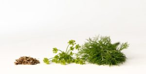 Dill seeds is one of the natural ways to reduce high blood pressure