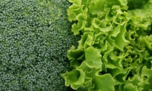 10 best alkaline foods
