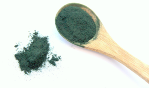 Spirulina is a greenish-bluish micro alga