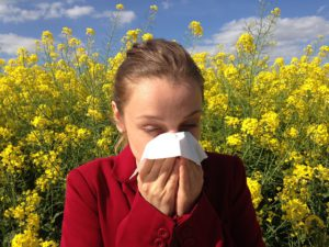 Spirulina fights against allergies