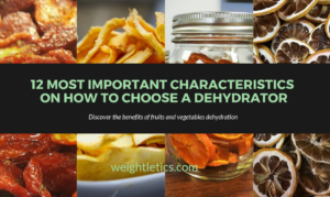 How to choose a dehydrator
